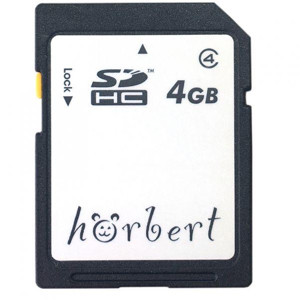 4GB SD Card